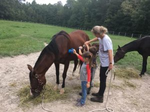 Homeschoolers Soulful Horsemanship Program